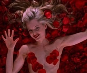 american beauty, movie, and roses image