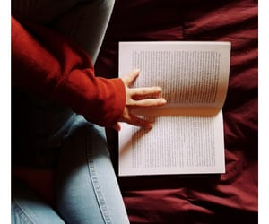 amor, books, and hipster image