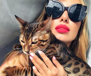 cat, fashion, and makeup image