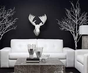 black, deer, and interior image