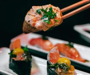 Gastronomy, gourmet, and japanese food image