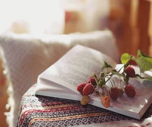 blackberries, redberries, and book image
