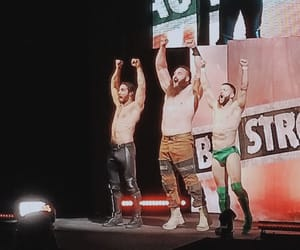 wrestling, wwe, and the shield image