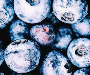 blue, blueberry, and fruit image