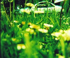 color, old, and lomo image