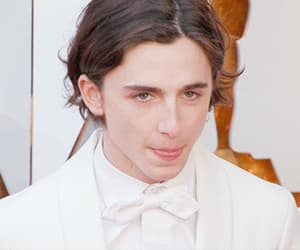 gif, timothee chalamet, and actor image