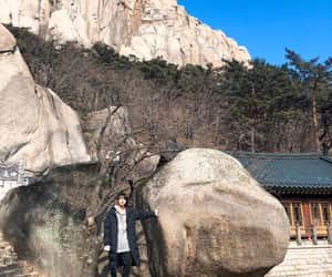 jin, kpop, and nature image