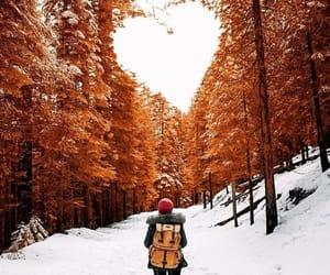 nieve, orange, and pinos image