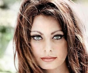 sophia loren, actress, and black and white image