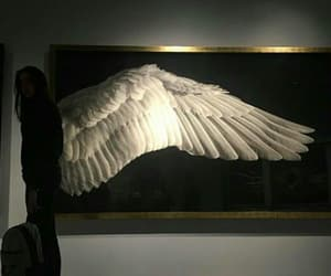 tumblr, angel, and wings image