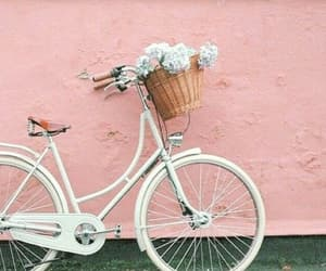 article, bike, and flowers image