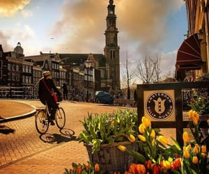 lugares, netherlands, and photography image
