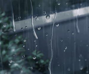 gif, rain, and window image