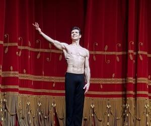ballet, bolero, and Dream image