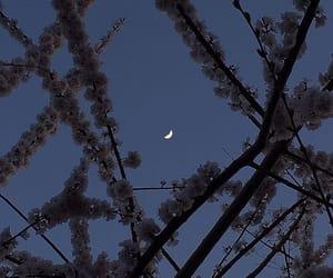 aesthetic, beautiful, and night image