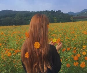 flowers, hair, and orange image