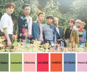 colour palette, exo, and kpop image