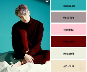 colour palette, kpop, and vernon image