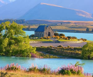 new zealand, place, and travel image