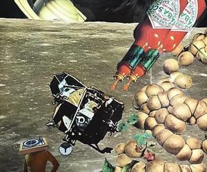 Collage, magic mushrooms, and nat geo image