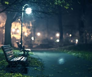 night and park image