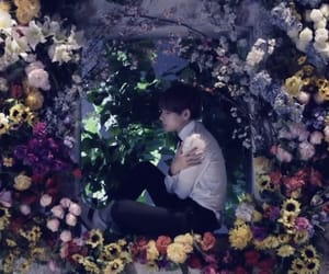 aesthetic, flowers, and mv image
