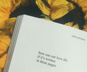 rupi kaur, book, and poetry image