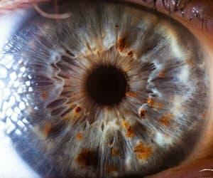 eye, theme, and eyes image