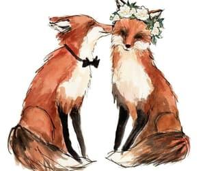fox, cute, and love image