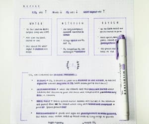notes, school, and purple image