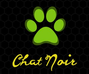 Chat Noir, miraculous, and ladybug image