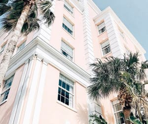 architecture, building, and palms image