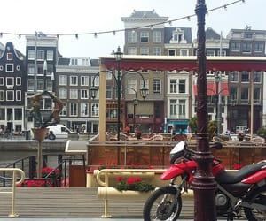 netherlands, trip, and holanda image