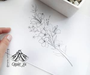 drawing, illustration, and flowers image