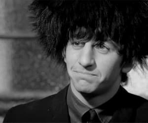 gif, ringo starr, and the beatles image