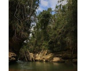 adventure, island life, and isla del encanto image
