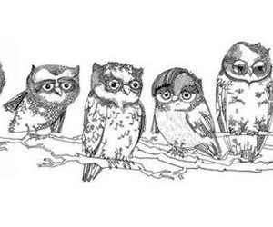 owl, branches, and drawing image