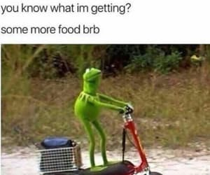 meme, funny, and frog image