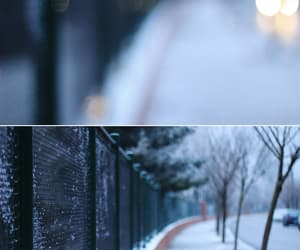 50mm, diptych, and urban image