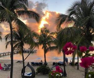 beach, orange, and paradise image