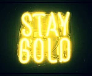staygold image