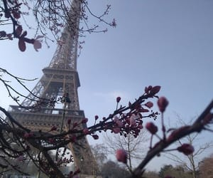 eiffel, eiffel tower, and flowers image