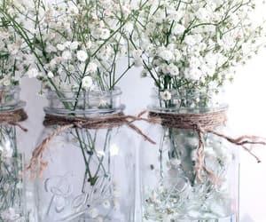 flower, white, and ًورد image
