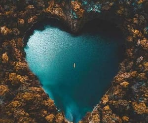 nature, heart, and blue image