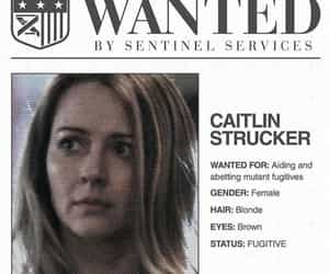 wanted, amy acker, and the gifted image