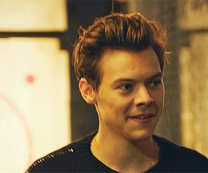 gif, Harry Styles, and handsome image