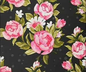 flowers, wallpaper, and pink image