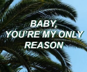 baby, quotes, and palm trees image