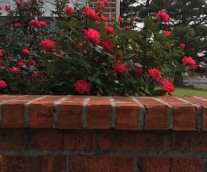 bricks, green, and flowers image