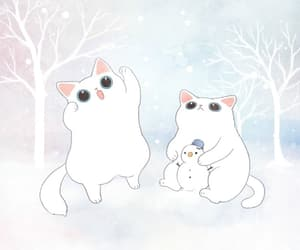 animal, cat, and cats image